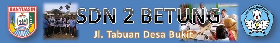 SDN 2 BETUNG